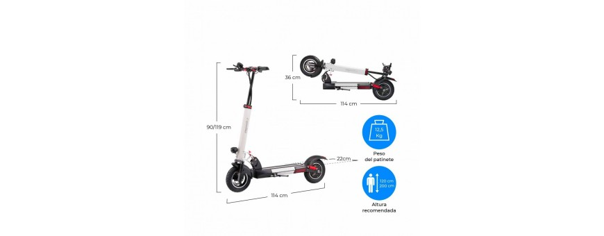 PATINETE ELECTRICO QUEENS 600W